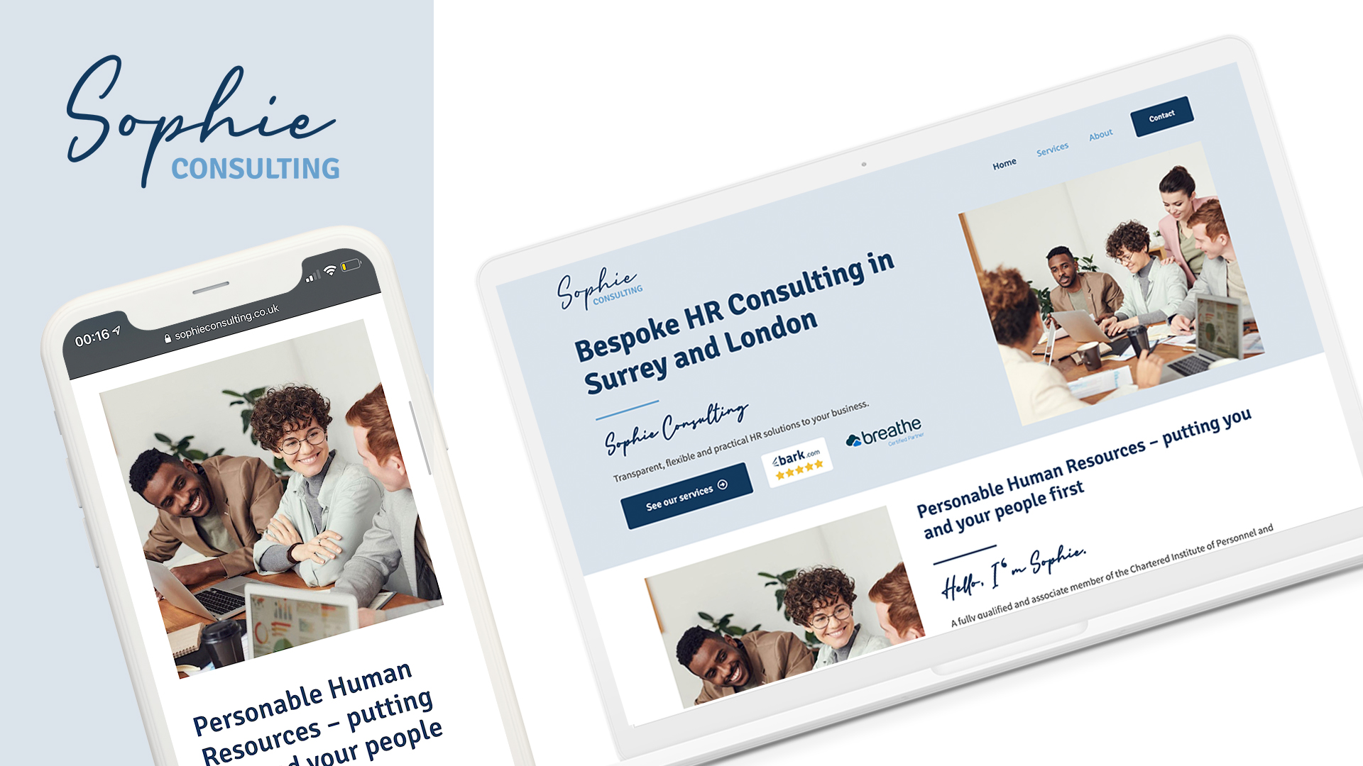 Sophie Consulting website design and build